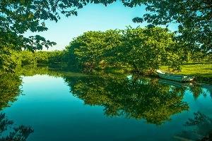 Laguna Manatí1